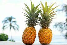 パイナップルパラダイス