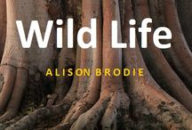 Wild Life a romance / She says he's got five per cent body fat and one per cent brain activity.  He says she's a foul-mouthed tart.  Meet Faustine and McPherson.