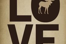 I love moose!