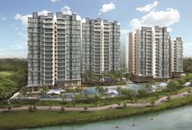 The Terrace EC @ Punggol Drive (Singapore New Launch Property) / The Terrace EC at Punggol Drive is a new launch executive condo in Singapore by Kheng Leong. Find out more - get e-brochure, prices & floor plans here!