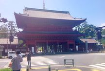 Japan / the traveling of Japan