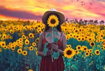 Sunflower photoshoot