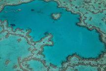 Great Barrier Reef - love it