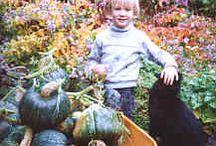Kids' Garden (Oh Boy) / by Jeni Smukowski