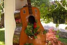 kert, virágok, növények