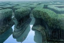 Surreal & Nature / by Oleg Eremin