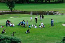 Golf Club del Veneto / Campi da golf nella regione Veneto