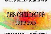 HLS June 2015 CAS Challenge