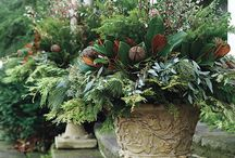 Containers filled with beauty.. / Seasonal Ideas for Outdoor Urns