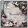 Passionata  et derivatives by MLDesign