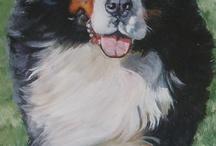 berniese mountain dog ~ berner <3