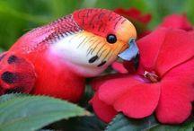 Papagájok