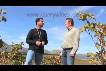 Videoclips Winelands South Africa / Videoclips of the Winelands of the Western Cape of South Africa