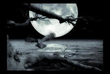 The Moon )O(