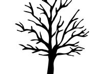 kontur drzewo