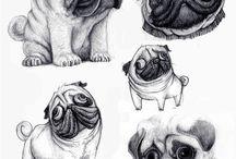 Sjove dyr
