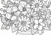 Colouring & Activity Pages