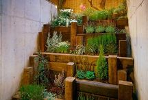 Great Garden Beds