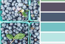 Branding colour palettes