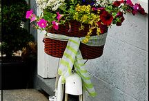 Bike & flowers / by miriam espaillat