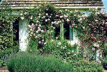 Engelske haver