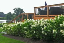 Landscape Plantings / General Board of Landscape Design and installation projects by Garden Design Inc.