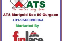 ATS Marigold