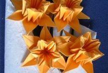Origami birthday / by Tammy Brice