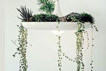 espacios verdeados