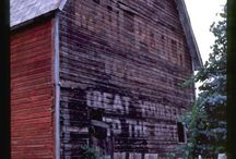 Weathered Old Barns / by Shari Willson