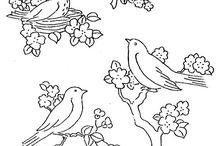 Vez ptice