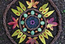 Sacred Seeds