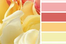 Kleur combo's / Kleuren die bij elkaar passen.