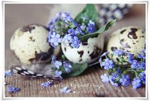 Spring & Easter / by Marja Schwedler