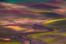 Stillness in Nature