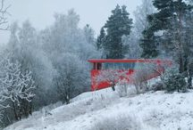 Red snow house / Red snow house