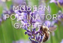 Modern Hive Blog
