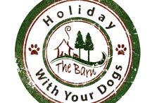 Holiday With Your Dogs