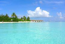 Resorts Maldives / Resorts of the Maldives