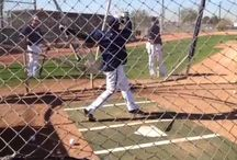 #CactusCrew/SpringTraining 2014 / by Milwaukee Brewers
