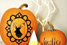 Halloween / by Jaclyn Dar Conte