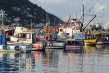 The Guest House Kalk Bay /  The Guest House Kalk Bay, situated in the small fishing village of Kalk Bay,   is a short walk from Kalk Bay Harbour, Shops, Restaurants, beaches and only 30 min from Cape Town city centre.