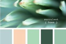 Colour Palettes / for events