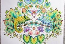 Coloring book Magical jungle