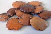 remedio para artose, semente de sucupira