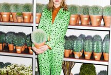 fashion  cactus
