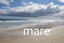 Mare / Das Wasser auf der Welt