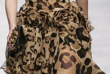 beauty leopard 7