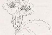 art: sketches