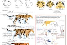 hayvan çizim